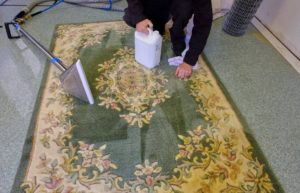 Rug Cleaning The Hills